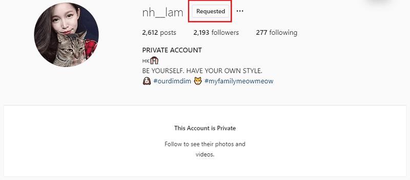 Instagram private accounts